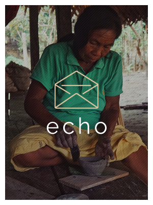 echo_footer